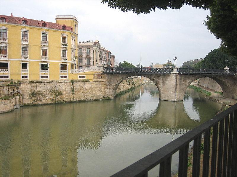 Río Segura a su paso por el Puente Viejo de Murcia